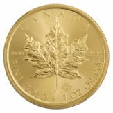 Sirkulert Canadian Maple Leaf Gull 1 oz